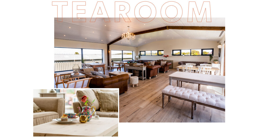 The word tearoom appears outlined over a photogra[h of the interior of the Eden Tearoom. The interior features brown sofas, a mixture of tables, upholstered benches and wooden chairs. A smaller photograh inlayed bottom left shows the colourful teapots used in the tearoom.